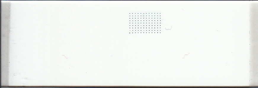 140 um Microarray Printed with uArrayer