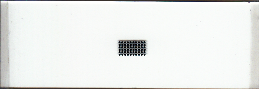 500um Microarray Printed with uArrayer